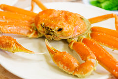 Steamed Alaska King Crab. On the plate Royalty Free Stock Photography