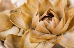 Free Steamed Artichoke Flower Stock Photo - 29060580