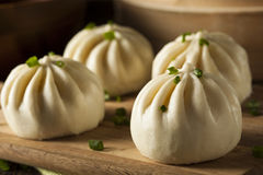 Steamed BBQ Pork Asian Buns Royalty Free Stock Image