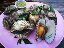 Steamed blanched clams with dipping sauce. Famous of Thailand seafood Street food Royalty Free Stock Photo