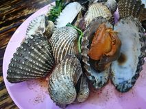 Steamed blanched clams with dipping sauce. Famous of Thailand seafood Street food Royalty Free Stock Images