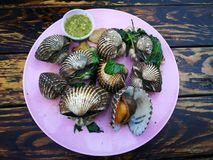 Steamed blanched clams with dipping sauce. Famous of Thailand seafood Street food Stock Photos