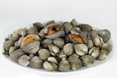 Steamed blanched clams Royalty Free Stock Photo