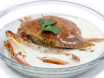 Steamed blue crab in milk Royalty Free Stock Image