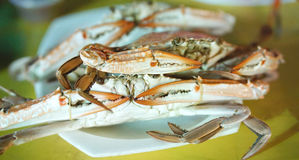 Steamed Blue crab on the plate Stock Photography