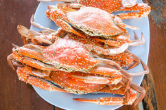 Steamed blue crab. Red crabs on a plate Royalty Free Stock Photo