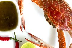 Steamed blue swimming crab, Flower crab, Blue crab Portunus pelagicus and spicy sauce isolated on white background. Thai style food stock photos