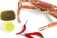Steamed blue swimming crab, Flower crab, Blue crab Portunus pelagicus and spicy sauce isolated on white background stock photo