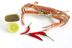 Steamed blue swimming crab, Flower crab, Blue crab Portunus pelagicus and spicy sauce isolated on white background. Thai style food stock photography