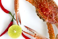 Steamed blue swimming crab, Flower crab, Blue crab Portunus pelagicus and spicy sauce isolated on white background royalty free stock images