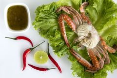 Steamed blue swimming crab, Flower crab, Blue crab Portunus pelagicus and spicy sauce isolated on white background. Thai style food royalty free stock photography