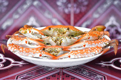 Steamed blue swimming crab Stock Image