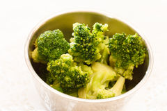 Steamed broccoli Royalty Free Stock Photos