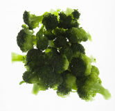 Steamed Broccoli Florets Stock Images