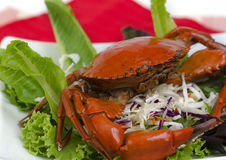 Steamed brown crab on salad. Royalty Free Stock Photos