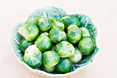 Steamed Brussel Sprouts Royalty Free Stock Images