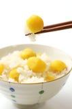 Steamed chestnut rice Stock Photos