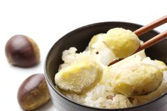 Steamed chestnut rice Stock Images