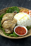 Steamed chicken with rice and vegetables Stock Photography