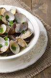 Steamed clams in a bowl Stock Photo