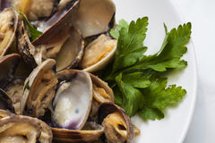 Steamed clams. In white wine sauce, with onions and parsley Royalty Free Stock Image