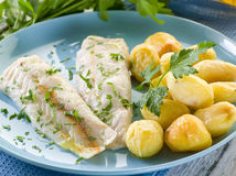 Steamed cod with parsley Royalty Free Stock Photography