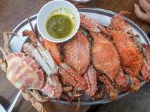 Steamed cooked crabs with spicy seafood sauce Stock Image