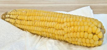 Steamed corn Royalty Free Stock Images