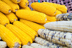 Steamed corn on basket; Organic healthy food in Thailand Stock Photos