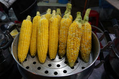 Steamed corn Stock Photography