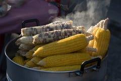 Steamed corn. Street food at walking street market Koh Phangan, Thailand Royalty Free Stock Image