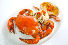 Steamed Crab. Steamed egg crab Stock Photos