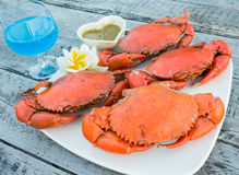 Steamed crab. With  blue cocktail Stock Photography