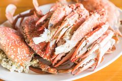 Steamed crab and crab claws Stock Photography