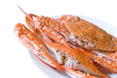 Steamed  crab on dish Royalty Free Stock Images