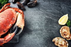 Steamed crab and fresh oysters on dark background. Sea food dinn Royalty Free Stock Image