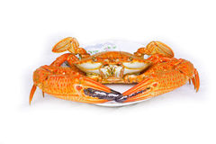 Steamed crab,seafood from asia Royalty Free Stock Image