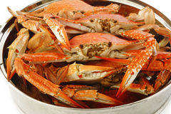 Steamed crab Royalty Free Stock Photography
