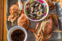 Steamed crab thai style Royalty Free Stock Images