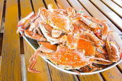 Steamed Crabs Stock Photos