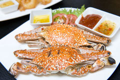 Steamed crabs delicious seafood Stock Images