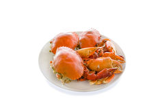 Steamed crabs prepared on plate,white background Stock Images
