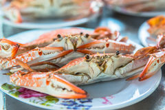 Steamed crabs, ready to eat seafood Stock Photos