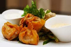 Steamed and deep fried duckleg wontons Royalty Free Stock Photo