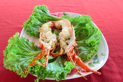 Steamed dragon lobster Stock Photography