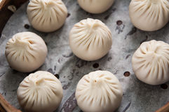 Steamed Dumplings. Chinesse Food with Stream Pork Dumpling,Steamed Dumplings Royalty Free Stock Photo