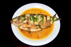 Steamed fish. A steamed fish with garlic is ready to be served Royalty Free Stock Photography