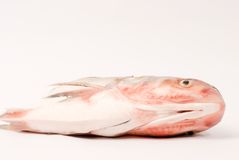 Steamed Fish  ,Chinese food Stock Photo