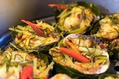 Steamed fish with curry paste. Stock Images