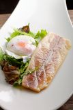 Steamed fish fillet with egg and salad Royalty Free Stock Photography